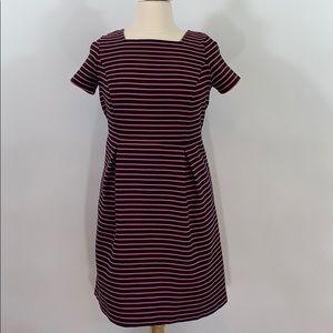 Talbots black and pink striped dress size …